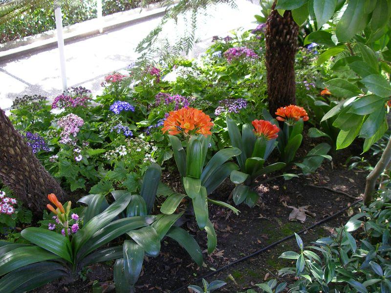 Keep Garden Green