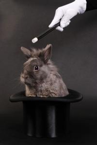 Rabbithat_2