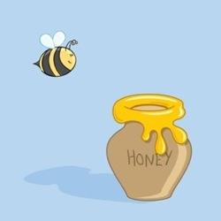 Pure_honey_3